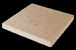 Sandstone Pool Landscaping Paver
